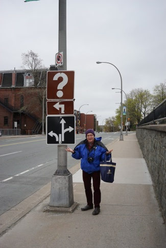 Andy puzzled by the signs, Halifax, Nova Scotia
