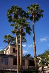 Christmas at the Royal Palms - 42